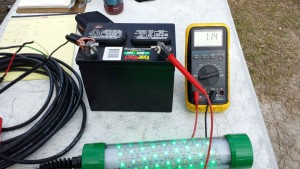 Gator Tough green led test